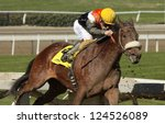 "ARCADIA, CA - JAN 12: Hall of Fame jockey Gary Stevens pilots ""Branding"" to her first win at Santa Anita Park on Jan 12, 2013 in Arcadia, CA. - stock photo"