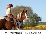 Pretty woman posing on horse in the field - stock photo