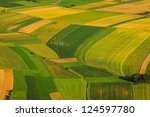 Green fields aerial view before harvest at summer - stock photo
