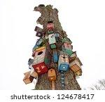 Various Colorful Bird Nest...
