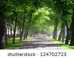 Green City Park In Sunny Summe...