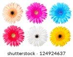 multicolor gerber daisy... | Shutterstock . vector #124924637