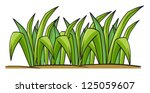 illustration of grass on a... | Shutterstock . vector #125059607