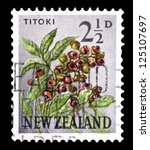 "Small photo of NEW ZEALAND - CIRCA 1960: A stamp printed in New Zealand shows image of Alectryon excelsus (Titoki in Mauri), with inscriptions ""Titoki"", from the series ""Flowers"", circa 1960"