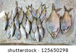 fresh fish in different sizes laying on a table - stock photo
