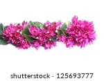 Purple Floral Border With Copy...