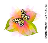 Beautiful butterfly on a flower. vector