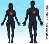 male and female healthy hearts. ... | Shutterstock .eps vector #125827307