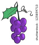 illustration of grapes | Shutterstock . vector #125859713