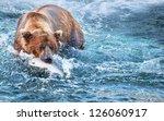 fishing bear in alaska | Shutterstock . vector #126060917