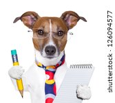 Accountant Dog With Pencil And...
