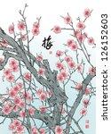plum blossom translation  plum | Shutterstock . vector #126152603