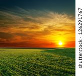 Stock photo good sunset and green grass 126291767