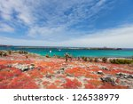Beautiful landscape of Galapagos South Plaza island - stock photo