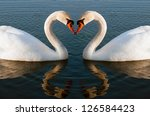 swans heart | Shutterstock . vector #126584423