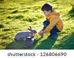 Little boy feeding two rabbits in farm - stock photo