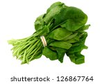 A spinach vegetable bundle isolated white - stock photo