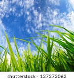green grass,development environmental protection concept - stock photo