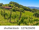 Styrian Tuscany Vineyard near Leutschach, Styria, Austria - stock photo