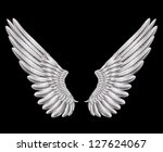silver wings   Shutterstock .eps vector #127624067