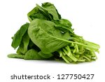 A green spinach vegetable bundle - stock photo