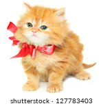 Stock photo red kitten with bow on a white background 127783403