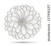 hand drawn flower chrysanthemum.... | Shutterstock .eps vector #127930157