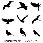 sets of silhouette birds flying ...