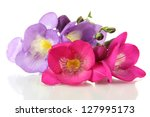 Stock photo bouquet of freesias flower isolated on white 127995173
