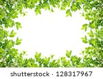 green leaves border isolated on ... | Shutterstock . vector #128317967