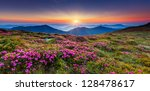 magic pink rhododendron flowers ... | Shutterstock . vector #128478617