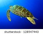 jackfishes | Shutterstock . vector #128547443