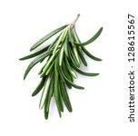 Rosemary spice in closeup - stock photo