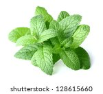 Fresh mint in closeup - stock photo