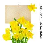 Beautiful Narcissus   Daffodil...