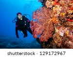 diver with giant fan coral - stock photo