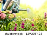 Watering Flowers In Garden...