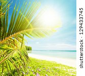 Tropical beach in sunny day - stock photo