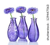 Blue Flowers In Vases Isolated...