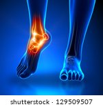 ankle pain in detail   anatomy... | Shutterstock . vector #129509507