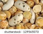 Small photo of Bean damaged by Acanthoscelides obtectus - bean beetle