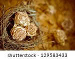 Small roses in a bird nest - stock photo