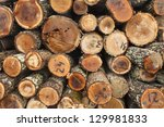 raw wood material | Shutterstock . vector #129981833