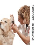 veterinary consultation and a... | Shutterstock . vector #130020053