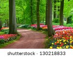 Park In The Spring.tulips....