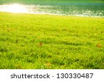 green grass with autumn leaves... | Shutterstock . vector #130330487