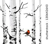 Bird Of Birches  Vector Drawin...