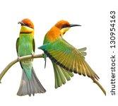 couple of bee eater bird on... | Shutterstock . vector #130954163
