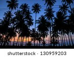 palm trees at sunset. | Shutterstock . vector #130959203