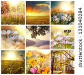 Flower collages - stock photo